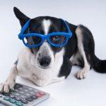 Richard Lindsey's Under-Utilized Pet Tax Deductions